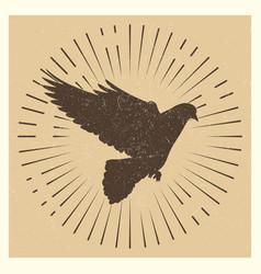 Dove vintage pigeon vector