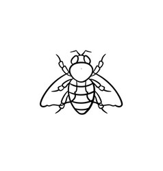 Fly hand drawn sketch icon vector