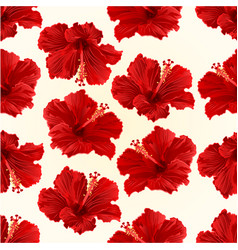 seamless texture red hibiscus simple tropical vector image