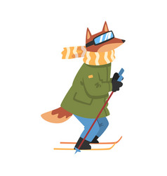 Sportive dog skiing animal athlete character vector