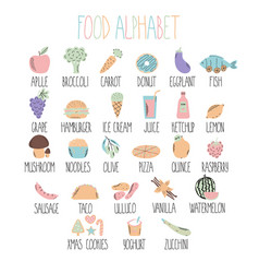 stylish food alphabet a to z alphabet made of vector image