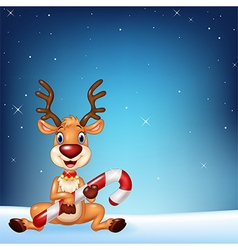Cute deer holding Christmas candy on a night sky vector image vector image