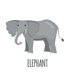 cute elephant in flat style vector image vector image