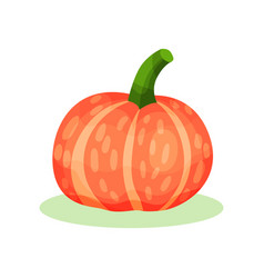 Flat icon of big round pumpkin orange vector