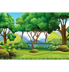 Forest scene with river and trees vector image