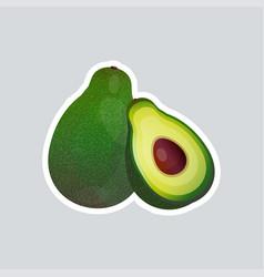 fresh juicy avocado sticker tasty ripe fruit icon vector image