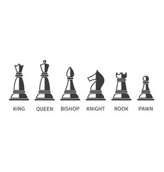 set chess icons vector image