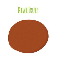 Tropical fruit exotic kiwi cartoon flat style vector