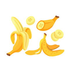 yellow bananas set on white background vector image