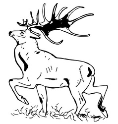 deer with large antlers vector image vector image