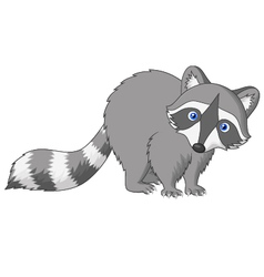 Cute raccoon cartoon vector image