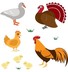 Farm animals set 4 vector image vector image
