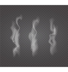 Set of transparent white smoke vector image