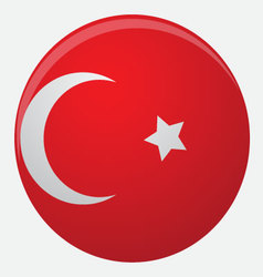 Turkey flag icon flat vector image vector image