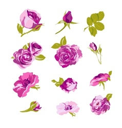 Set of floral design elements flower collection vector image vector image