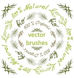 brush - Bio Organic Natural vector image