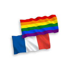 Flags france and rainbow gay pride on a white vector