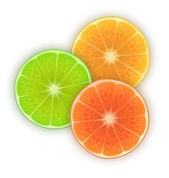 fresh orange lime and lemon slices on white vector image