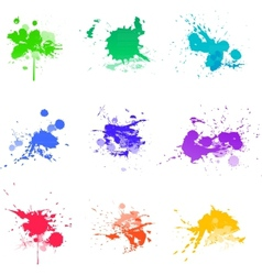 Paint splat ink vector