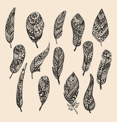 set feathers hand drawing vector image