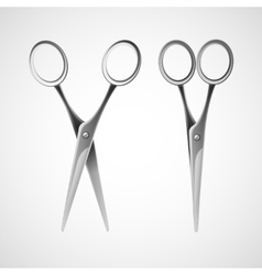 Silver scissors isolated in white background vector image
