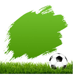 soccer ball with blot and grass vector image