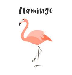 cartoon pink flamingo isolated vector image