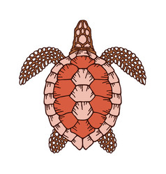 Decorative graphic turtle for coloring book vector