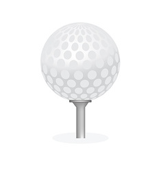 Golf ball on tee isolated vector image