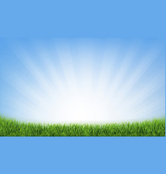 grass frame with sunburst blue background vector image