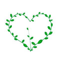 Green Climber Leaves in Beautiful Heart Shape vector