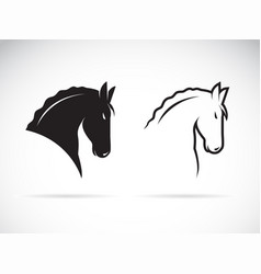 horse head design on white background wild vector image
