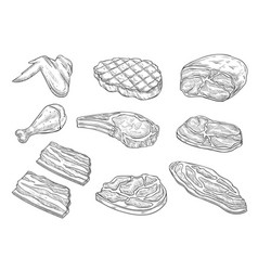 Sketch butchery meat chicken icons vector