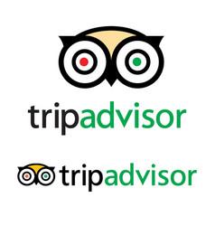 Tripadvisor logo icon - popular service vector