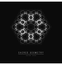 Flower of life sacred geometry symbol harmony vector