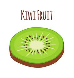 tropical fruit kiwi slice of kiwi flat vector image vector image