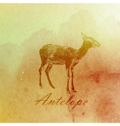 vintage of a watercolor antelope on the old paper vector image vector image