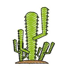 cactus doodle vector image