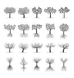 Collection of black trees and roots vector
