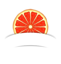 Grapefruit with paper banner vector