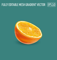 Half an orange on a green background vector
