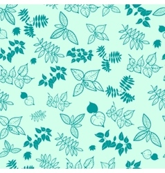 natural background from the leaves vector image