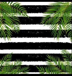 beautifil palm tree leaf silhouette backgroun vector image