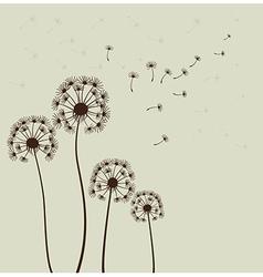 Sylized dandelions vector image
