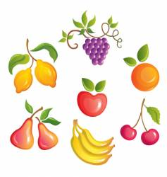 appetizing fruits vector image