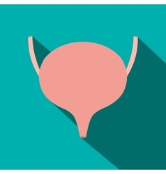 Bladder flat icon with shadow vector