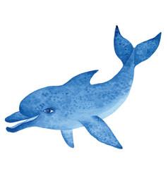 blue dolphin watercolor vector image