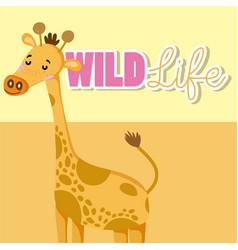 giraffe wildlife animal cartoon vector image