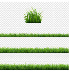Green grass frames set and isolated transparent vector