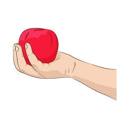 Hand holding red apple vector